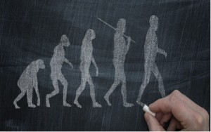 evolucion humana_entrada