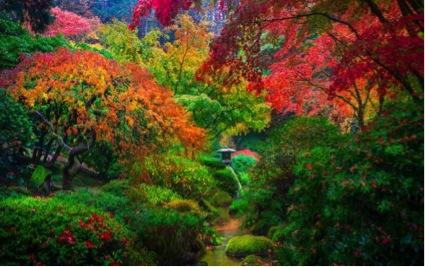 japon_paisaje